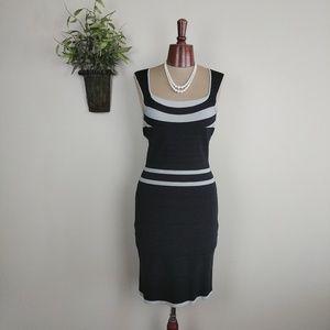 Express Stripe Bodycon Stretch Wide Neck Dress